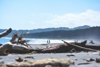 bruce-beach-NZ