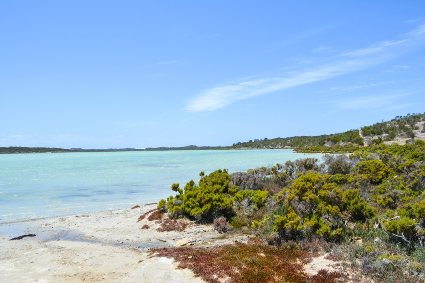 Coffin Bay National Park-18