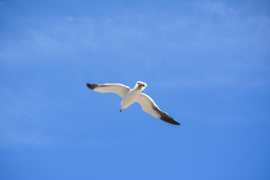 Coffin Bay National Park-24