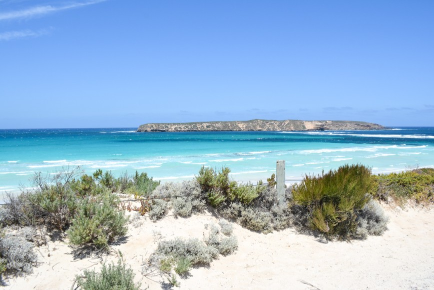 Coffin Bay National Park-34
