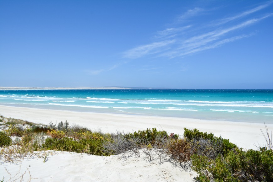 Coffin Bay National Park-37